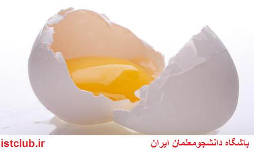 توزیع رایگان تخم مرغ در مدارس/تخم مرغهای غنی شده با ویتامین E به بازار میآید